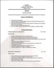 Insurance Agent Resume3