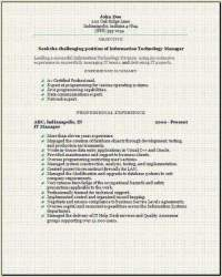 Information Technology Resume3