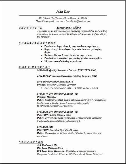 Sample Audit Resume